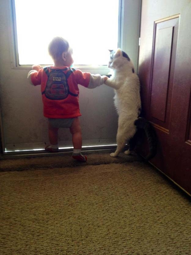 aby and cat escaping