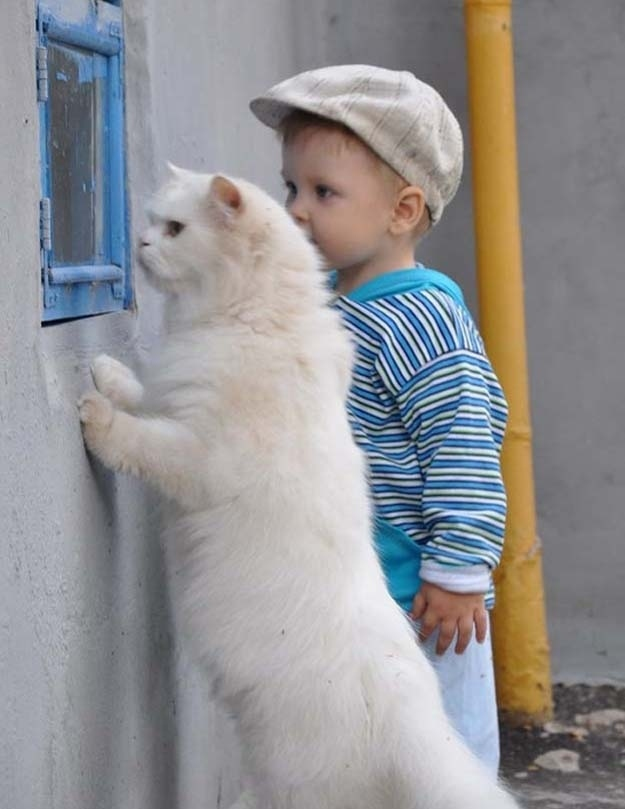 baby and cat plot escape