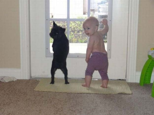 baby and dog looking out window