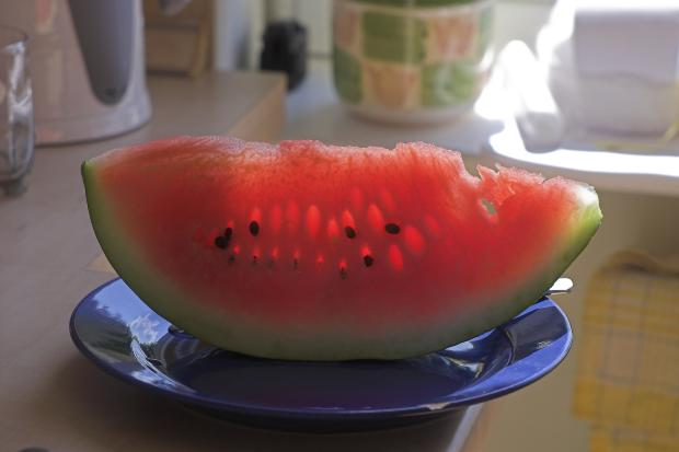 Can cats eat watermelon pet orb for What parts of a watermelon can you eat
